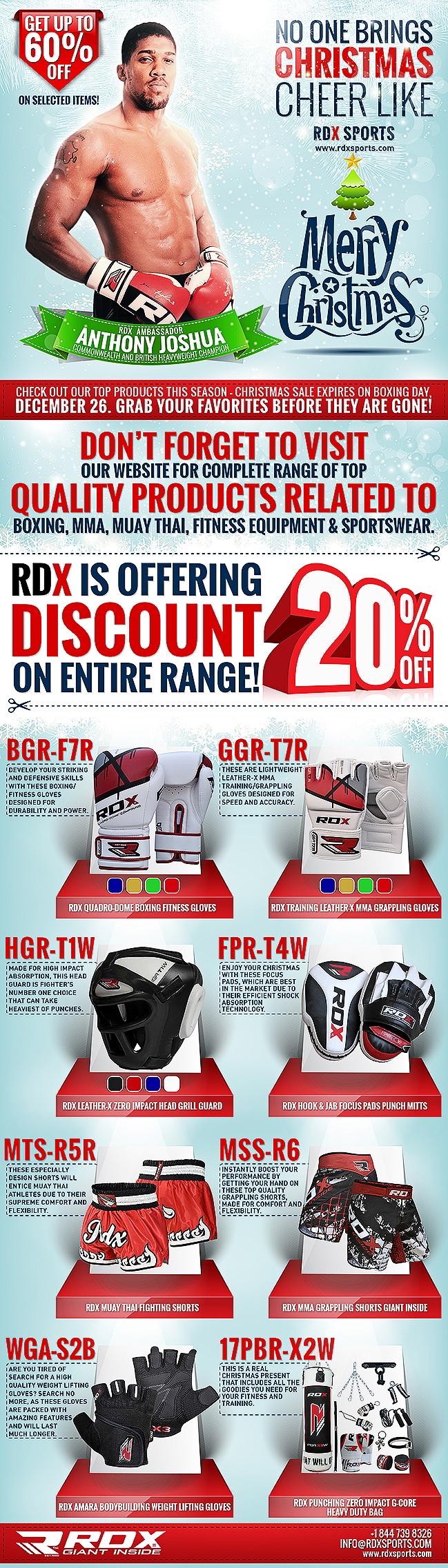 rdx Christmas Infographic